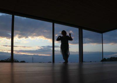 Vincianne en ombre chinoise dans la salle Reliance - Terre et source
